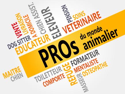 Bienvenur aux PROs chez PLATINUM nourriture naturelle et soins pour chiens